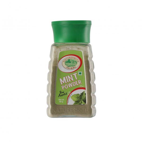 Buy Nature Smith Mint Powder 40gm Online Vadodara - Maplesfood.com